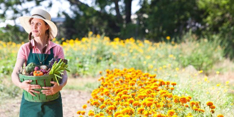 Rolnictwo ekologiczne - aktywizacja osób niepełnosprawnych